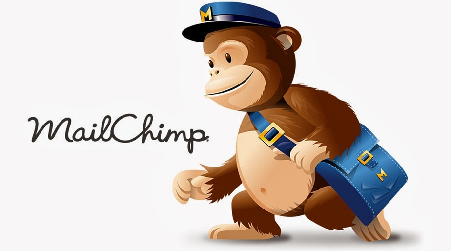 NEED HELP WITH MAILCHIMP?